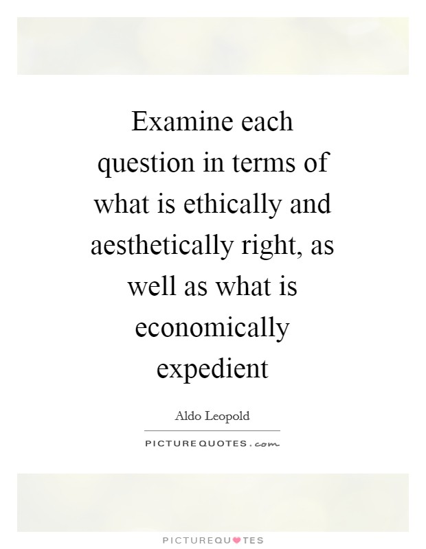 Examine each question in terms of what is ethically and aesthetically right, as well as what is economically expedient Picture Quote #1