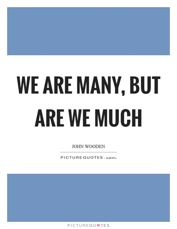 We are many, but are we much Picture Quote #1