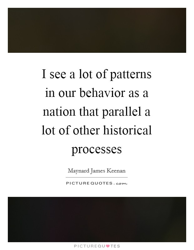 I see a lot of patterns in our behavior as a nation that parallel a lot of other historical processes Picture Quote #1