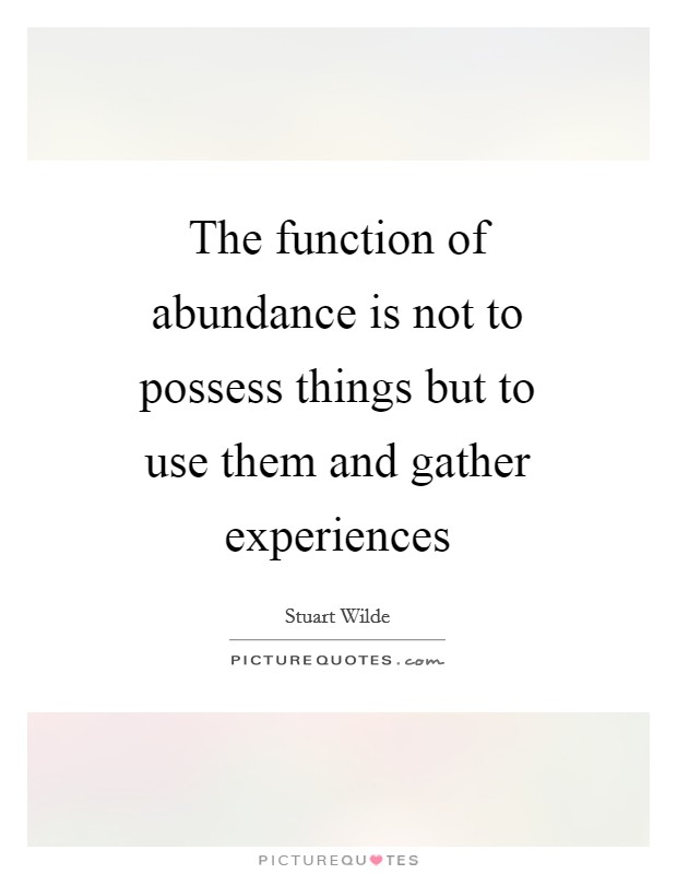 The function of abundance is not to possess things but to use them and gather experiences Picture Quote #1