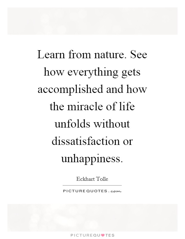 Learn from nature. See how everything gets accomplished and how the miracle of life unfolds without dissatisfaction or unhappiness Picture Quote #1