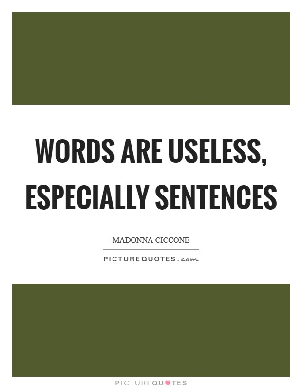 Words are useless, especially sentences Picture Quote #1