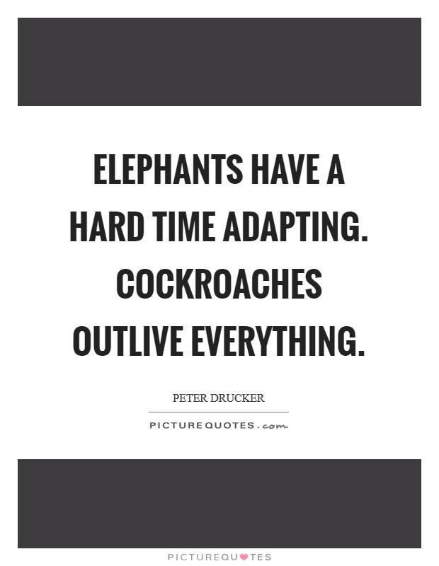 Elephants have a hard time adapting. Cockroaches outlive everything Picture Quote #1