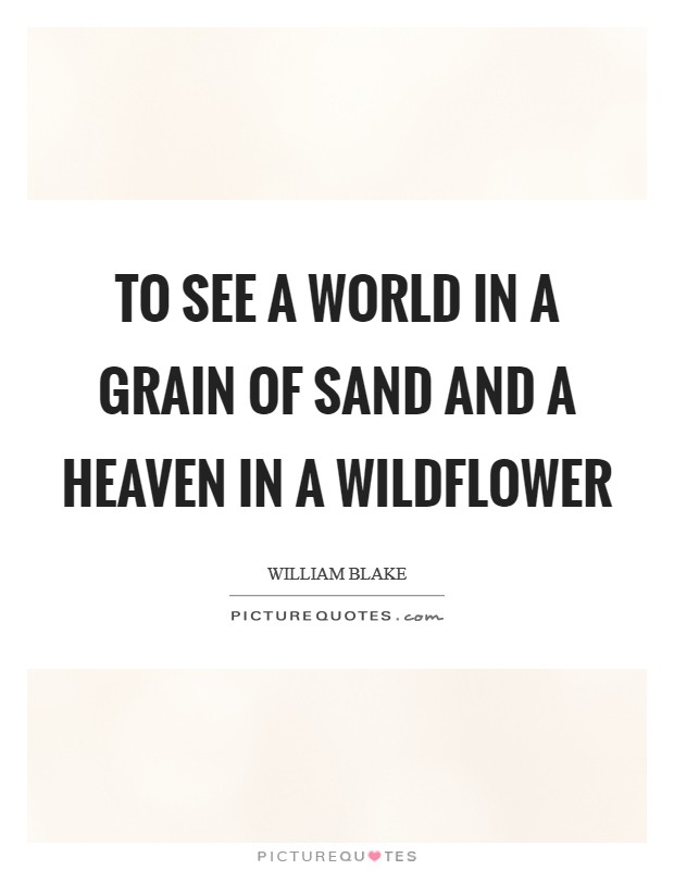 To see a world in a grain of sand and a heaven in a wildflower Picture Quote #1