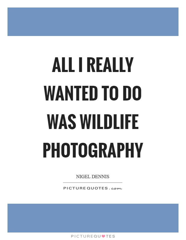 All I really wanted to do was wildlife photography Picture Quote #1