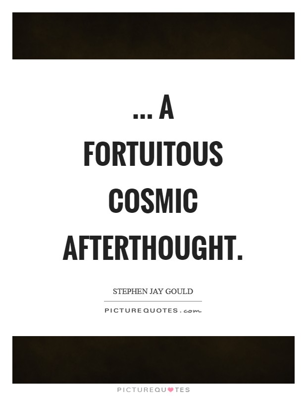 ... a fortuitous cosmic afterthought Picture Quote #1