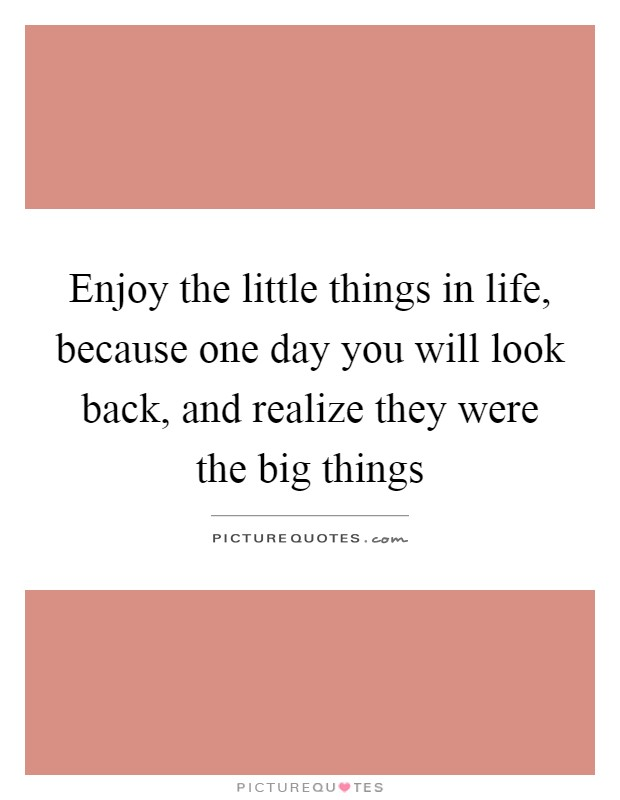 Enjoy the little things in life, because one day you will look back, and realize they were the big things Picture Quote #1