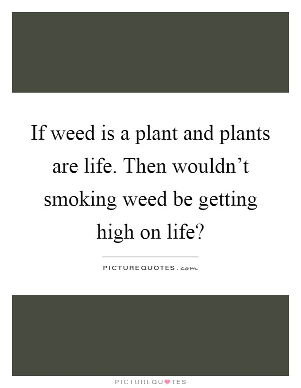 If weed is a plant and plants are life. Then wouldn't ...