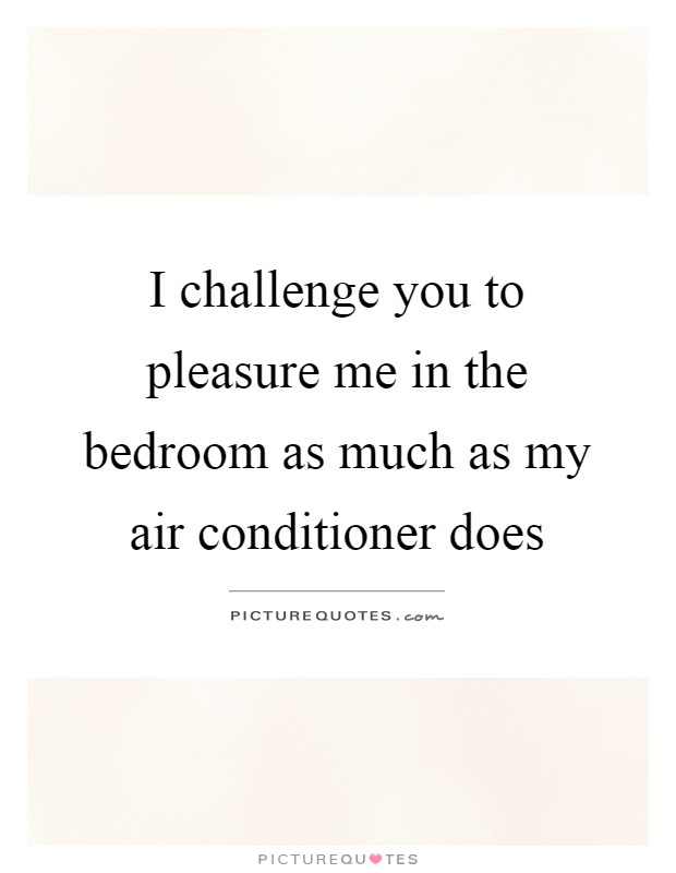 I challenge you to pleasure me in the bedroom as much as my air conditioner does Picture Quote #1