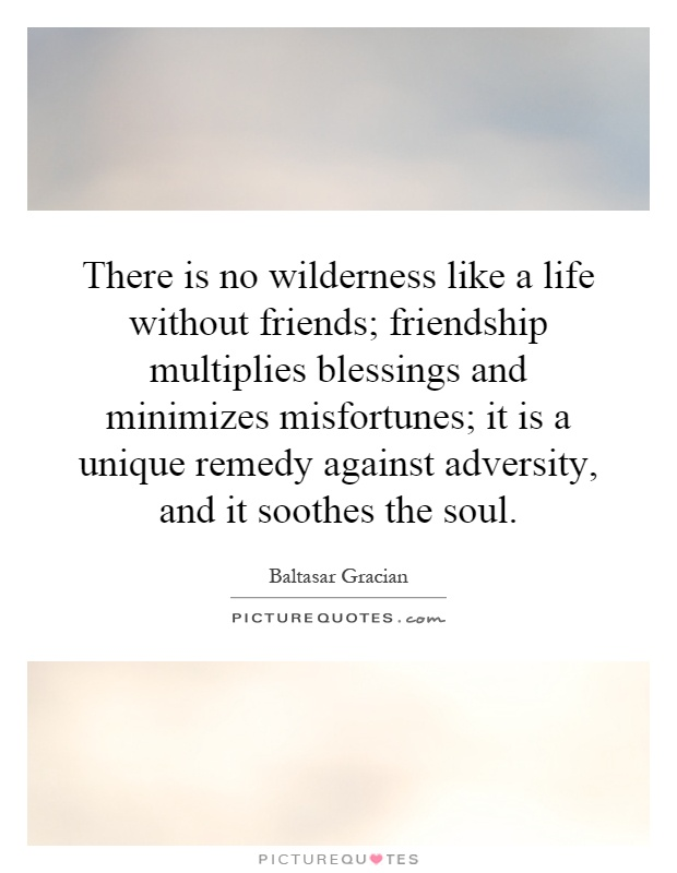 There is no wilderness like a life without friends; friendship multiplies blessings and minimizes misfortunes; it is a unique remedy against adversity, and it soothes the soul Picture Quote #1
