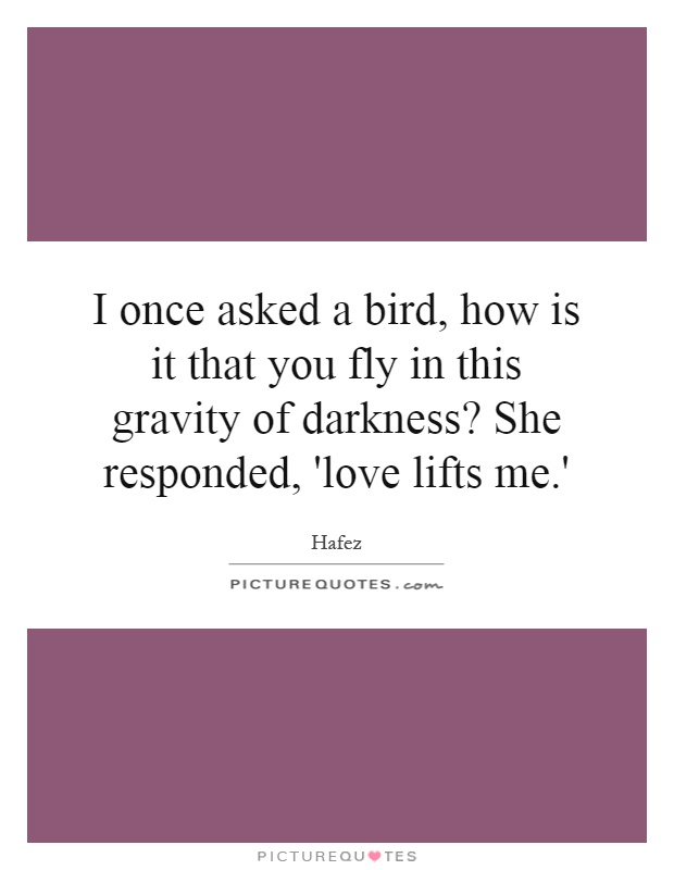 I once asked a bird, how is it that you fly in this gravity of darkness? She responded, 'love lifts me.' Picture Quote #1