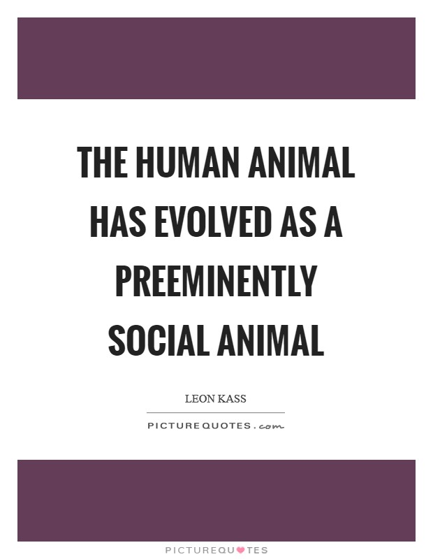 The human animal has evolved as a preeminently social animal Picture Quote #1