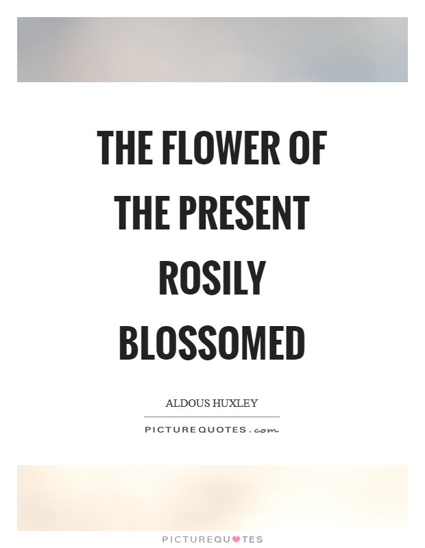 The flower of the present rosily blossomed Picture Quote #1