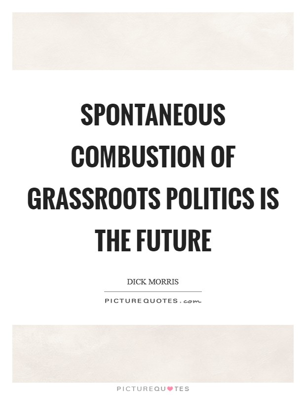 Spontaneous combustion of grassroots politics is the future Picture Quote #1