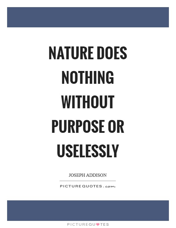 Nature does nothing without purpose or uselessly Picture Quote #1