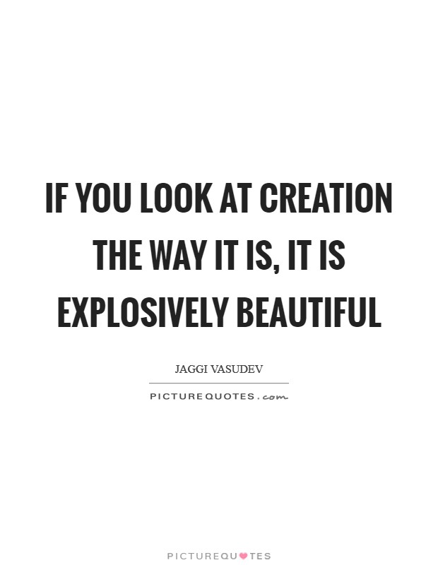 If you look at creation the way it is, it is explosively beautiful Picture Quote #1