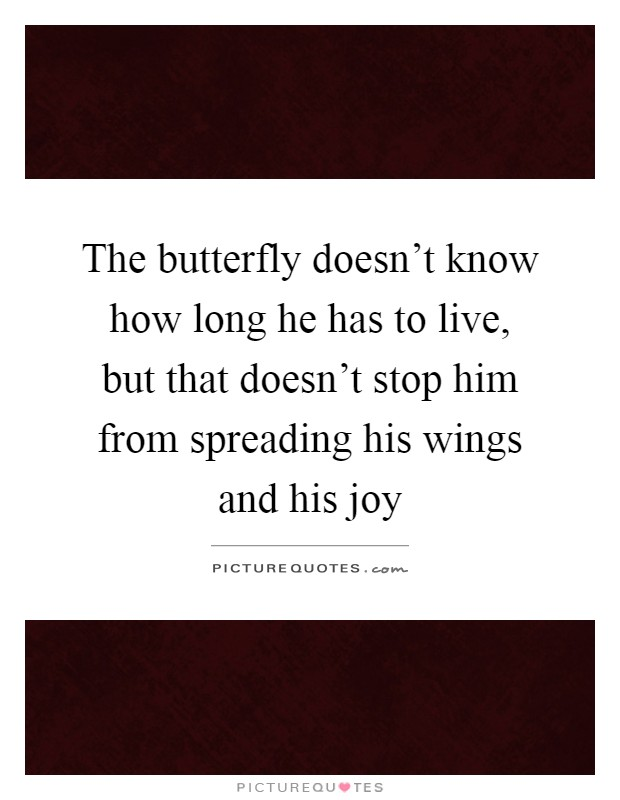 The butterfly doesn't know how long he has to live, but that doesn't stop him from spreading his wings and his joy Picture Quote #1