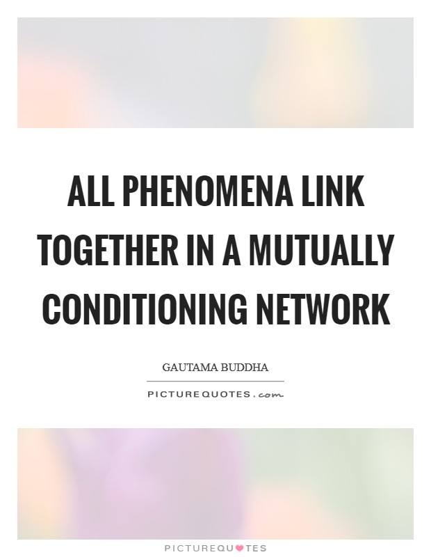 All phenomena link together in a mutually conditioning network Picture Quote #1