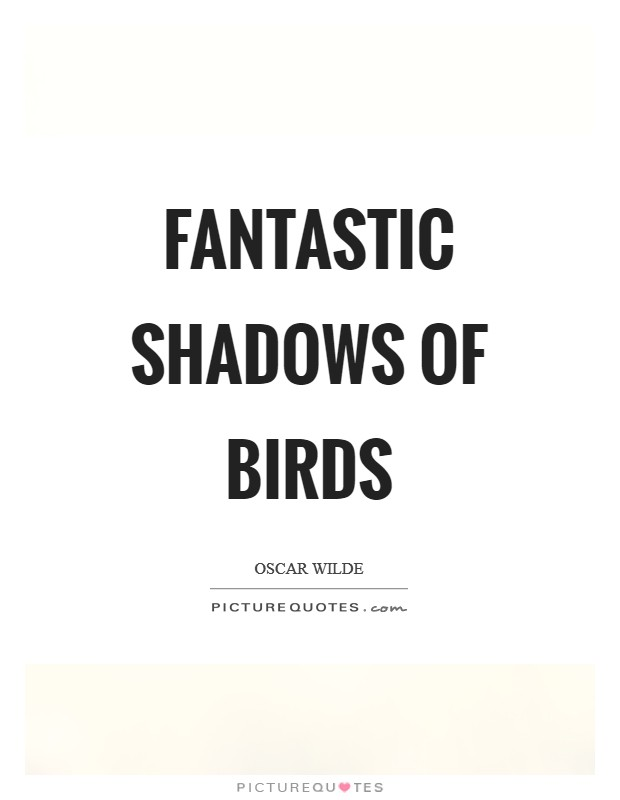 Fantastic shadows of birds Picture Quote #1
