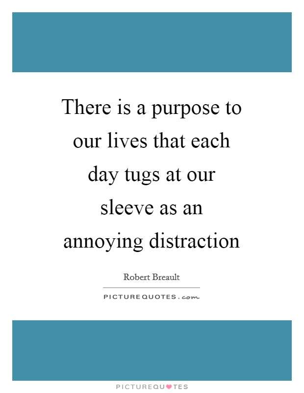 There is a purpose to our lives that each day tugs at our sleeve as an annoying distraction Picture Quote #1