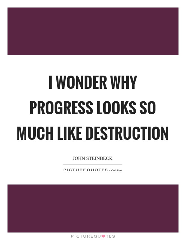 I wonder why progress looks so much like destruction Picture Quote #1