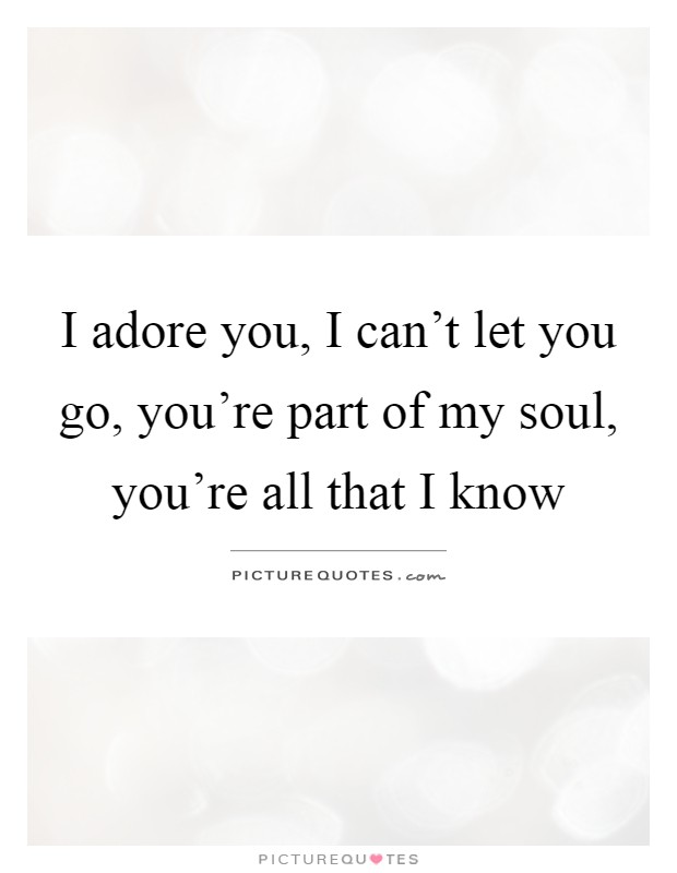 I adore you, I can't let you go, you're part of my soul, you're all that I know Picture Quote #1