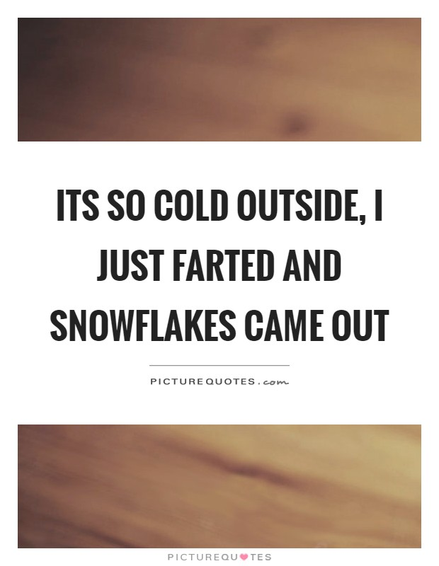 Its so cold outside, I just farted and snowflakes came out Picture Quote #1