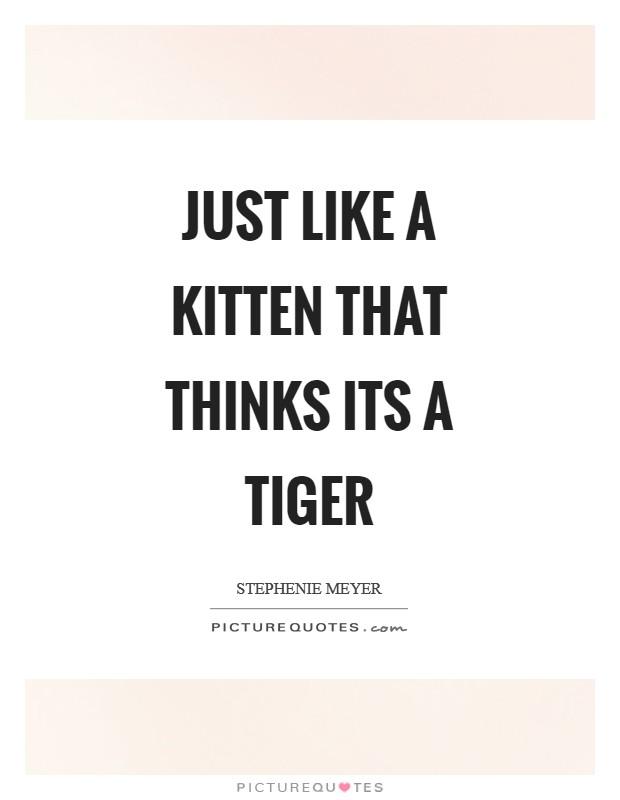 Just like a kitten that thinks its a tiger Picture Quote #1