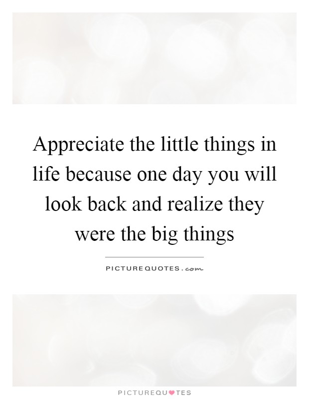 Appreciate the little things in life because one day you will look back and realize they were the big things Picture Quote #1