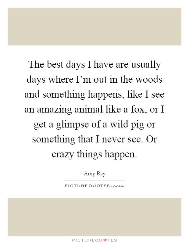 The best days I have are usually days where I'm out in the woods and something happens, like I see an amazing animal like a fox, or I get a glimpse of a wild pig or something that I never see. Or crazy things happen Picture Quote #1