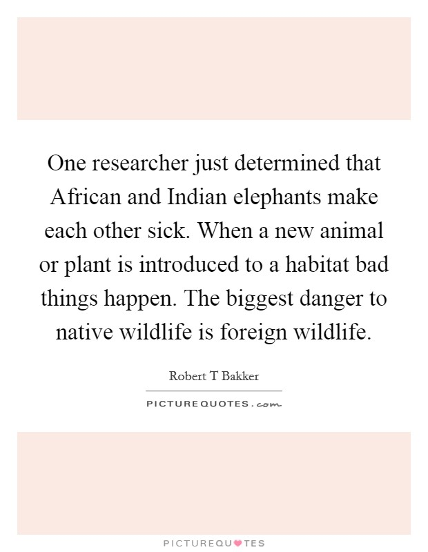 One researcher just determined that African and Indian elephants make each other sick. When a new animal or plant is introduced to a habitat bad things happen. The biggest danger to native wildlife is foreign wildlife Picture Quote #1