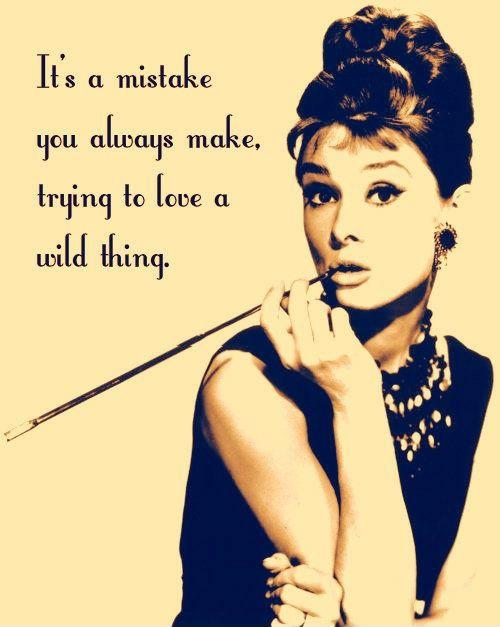 It's a mistake you always make, trying to love a wild thing Picture Quote #1