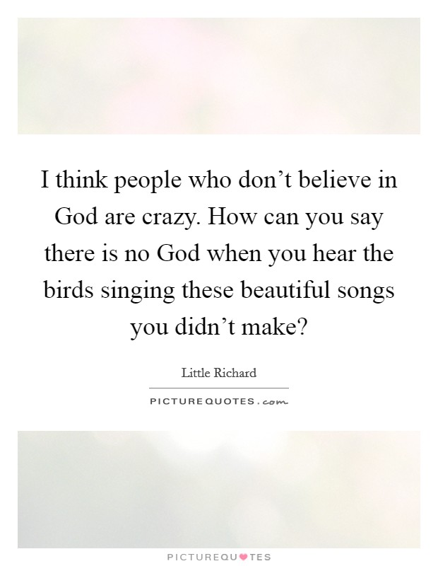 I think people who don't believe in God are crazy. How can you say there is no God when you hear the birds singing these beautiful songs you didn't make? Picture Quote #1