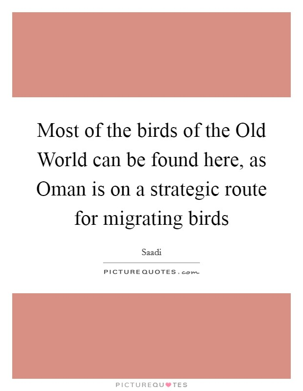 Most of the birds of the Old World can be found here, as Oman is on a strategic route for migrating birds Picture Quote #1