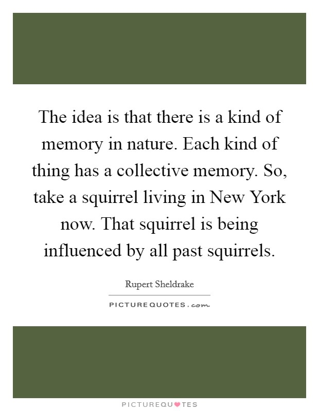 The idea is that there is a kind of memory in nature. Each kind of thing has a collective memory. So, take a squirrel living in New York now. That squirrel is being influenced by all past squirrels Picture Quote #1