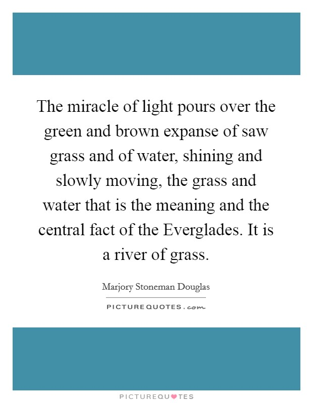 The miracle of light pours over the green and brown expanse of saw grass and of water, shining and slowly moving, the grass and water that is the meaning and the central fact of the Everglades. It is a river of grass Picture Quote #1