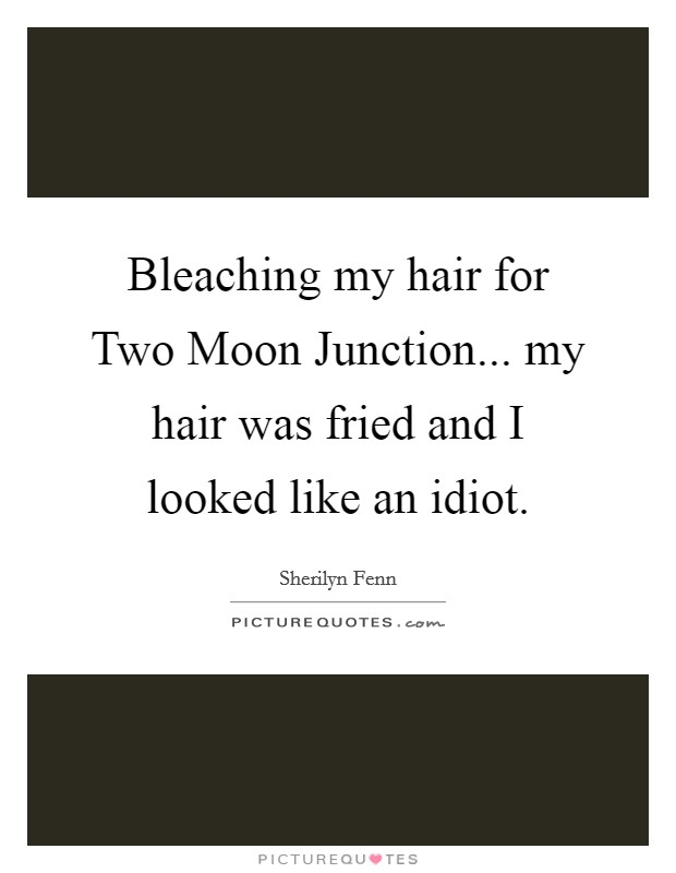 Bleaching my hair for Two Moon Junction... my hair was fried and I looked like an idiot Picture Quote #1