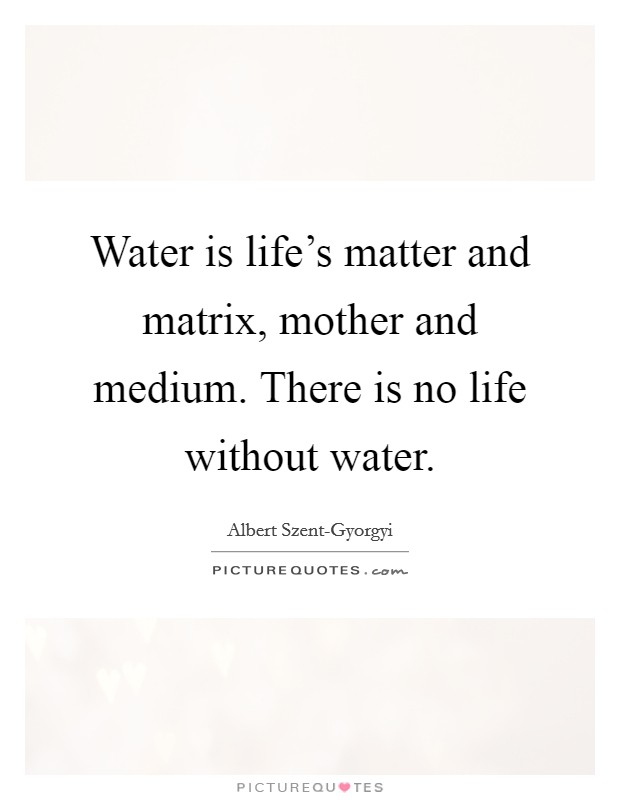 Water is life's matter and matrix, mother and medium. There is no life without water Picture Quote #1