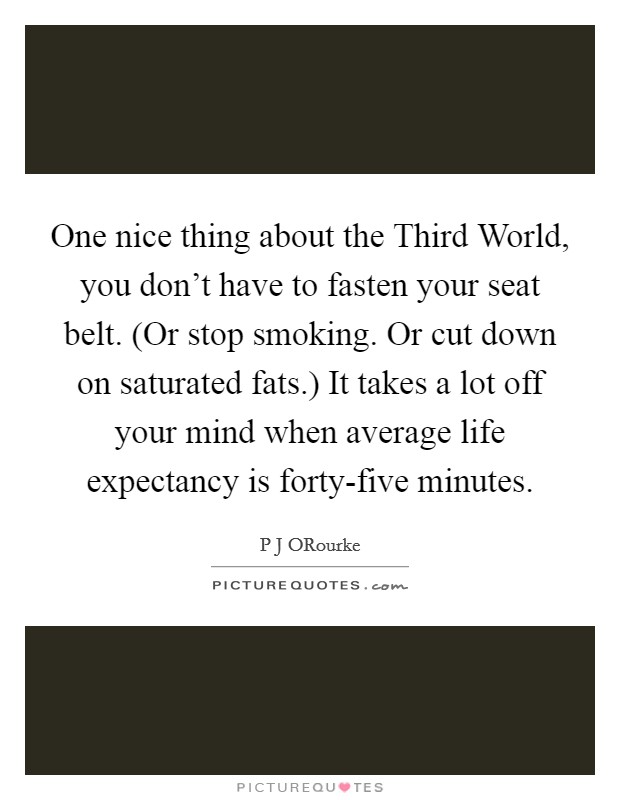 One nice thing about the Third World, you don't have to fasten your seat belt. (Or stop smoking. Or cut down on saturated fats.) It takes a lot off your mind when average life expectancy is forty-five minutes Picture Quote #1