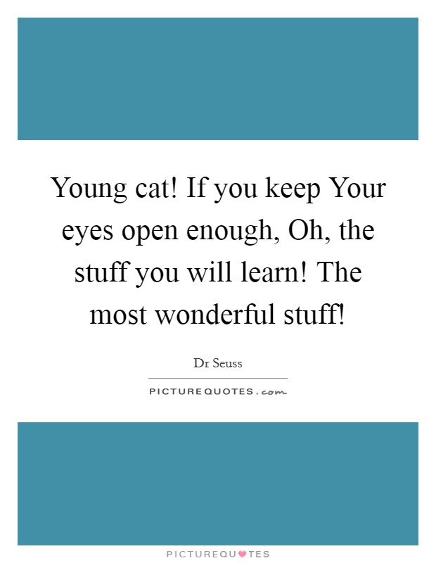 Young cat! If you keep Your eyes open enough, Oh, the stuff you will learn! The most wonderful stuff! Picture Quote #1