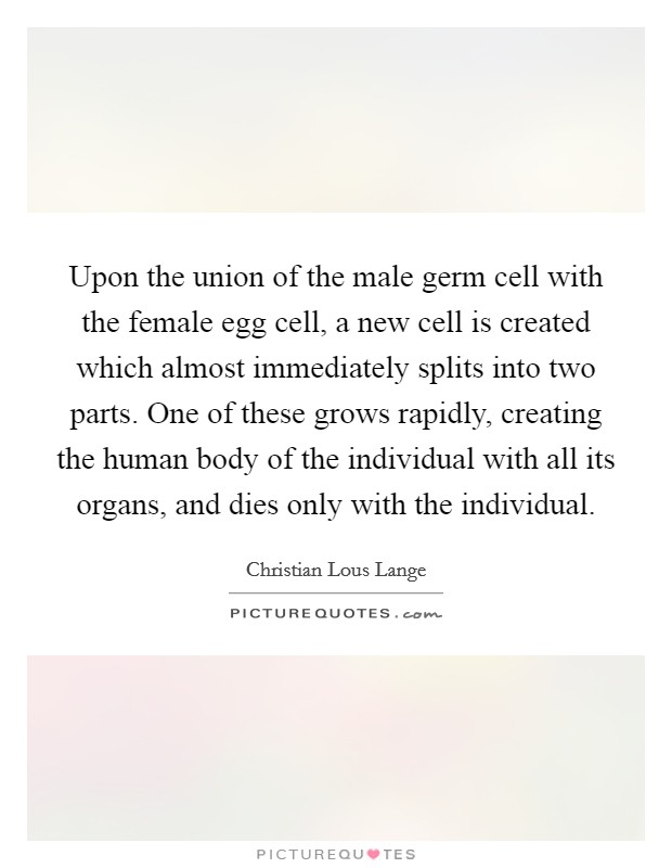 Upon the union of the male germ cell with the female egg cell, a new cell is created which almost immediately splits into two parts. One of these grows rapidly, creating the human body of the individual with all its organs, and dies only with the individual Picture Quote #1