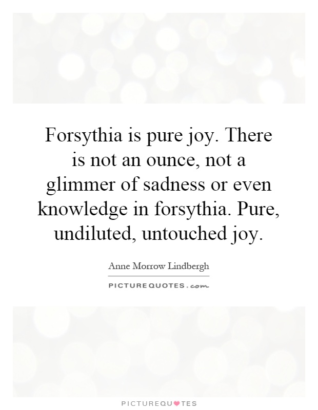 Forsythia is pure joy. There is not an ounce, not a glimmer of sadness or even knowledge in forsythia. Pure, undiluted, untouched joy Picture Quote #1