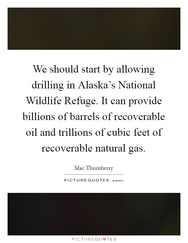 We should start by allowing drilling in Alaska's National Wildlife Refuge. It can provide billions of barrels of recoverable oil and trillions of cubic feet of recoverable natural gas Picture Quote #1