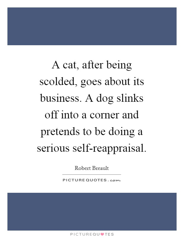A cat, after being scolded, goes about its business. A dog slinks off into a corner and pretends to be doing a serious self-reappraisal Picture Quote #1
