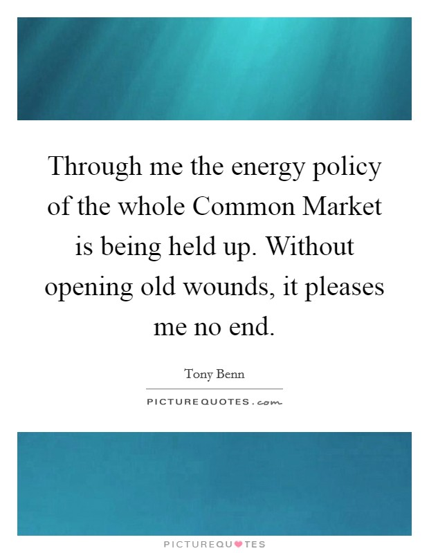 Through me the energy policy of the whole Common Market is being held up. Without opening old wounds, it pleases me no end Picture Quote #1