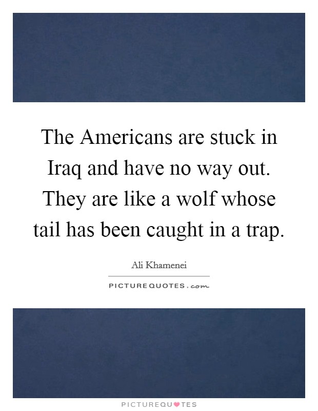 The Americans are stuck in Iraq and have no way out. They are like a wolf whose tail has been caught in a trap Picture Quote #1