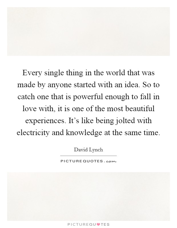 Every single thing in the world that was made by anyone started with an idea. So to catch one that is powerful enough to fall in love with, it is one of the most beautiful experiences. It's like being jolted with electricity and knowledge at the same time Picture Quote #1