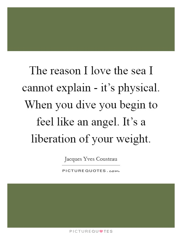 The reason I love the sea I cannot explain - it's physical. When you dive you begin to feel like an angel. It's a liberation of your weight Picture Quote #1