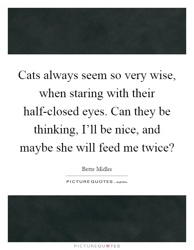 Cats always seem so very wise, when staring with their half-closed eyes. Can they be thinking, I'll be nice, and maybe she will feed me twice? Picture Quote #1