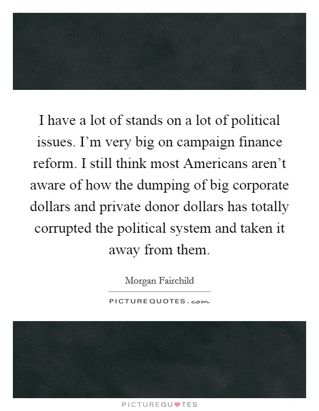 I have a lot of stands on a lot of political issues. I'm very big on campaign finance reform. I still think most Americans aren't aware of how the dumping of big corporate dollars and private donor dollars has totally corrupted the political system and taken it away from them Picture Quote #1